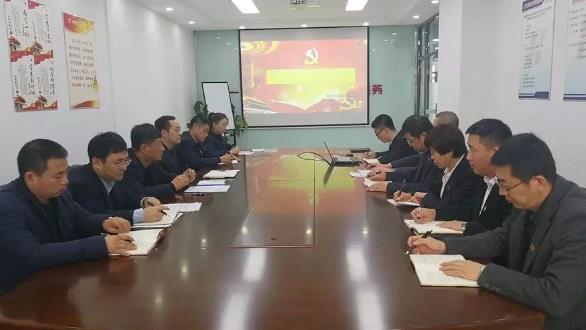 公司召开2017年度基层党组织组织生活会和民主评议党员工作会议