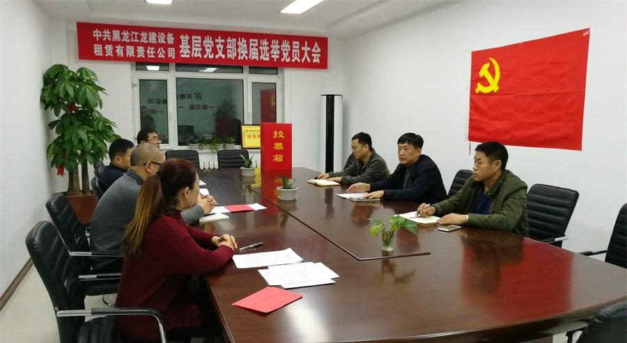 中共黑龙江beplay官方网站地址设备租赁有限责任公司基层党支部换届选举工作圆满结束