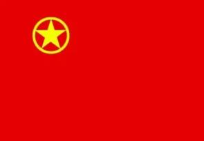 """观看红色电影,永葆入团初心""""党史学习教育主题团日活动"""
